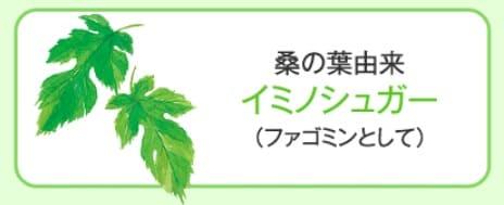 桑の葉エキス