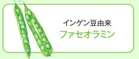 インゲン豆エキス